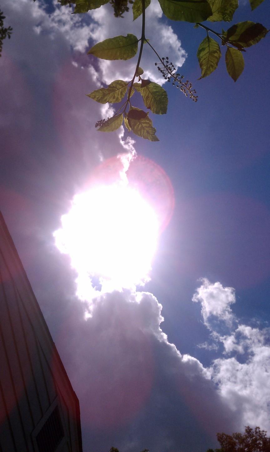 June 24 2012 12:46pm